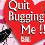 元彼の名前のゴキブリが餌に!動画でバレンタインのスッキリ法を紹介!米テキサス州動物園!